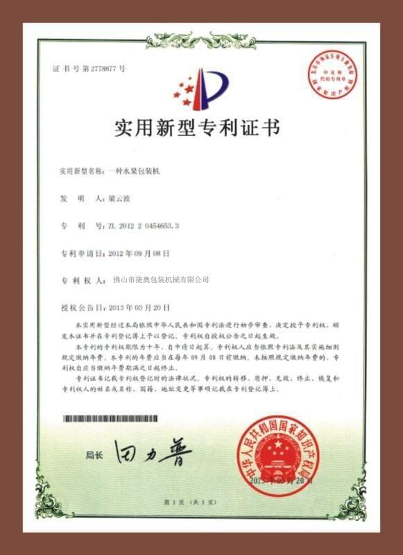 Patent certificate 5